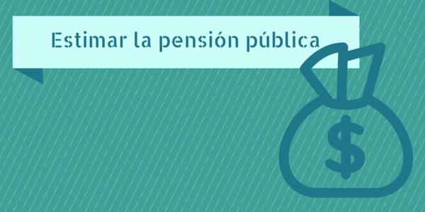 Estimar la pensión pública